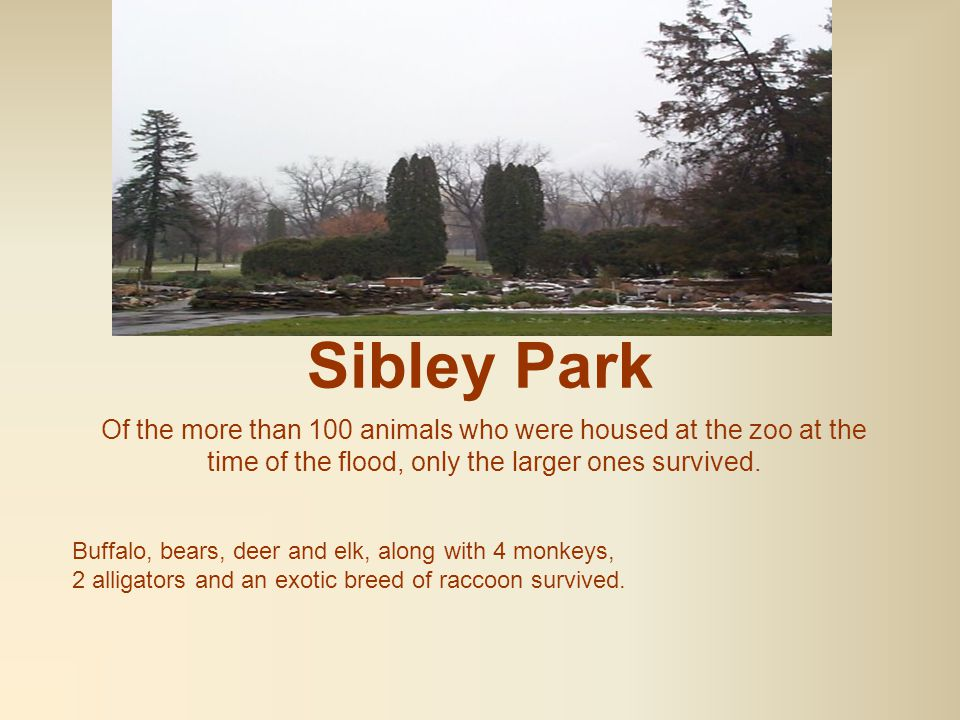 Sibley Park In 1965, the famous and highly popular Sibley Park Zoo was nearly swept away when the Blue Earth and Minnesota river valleys flooded.