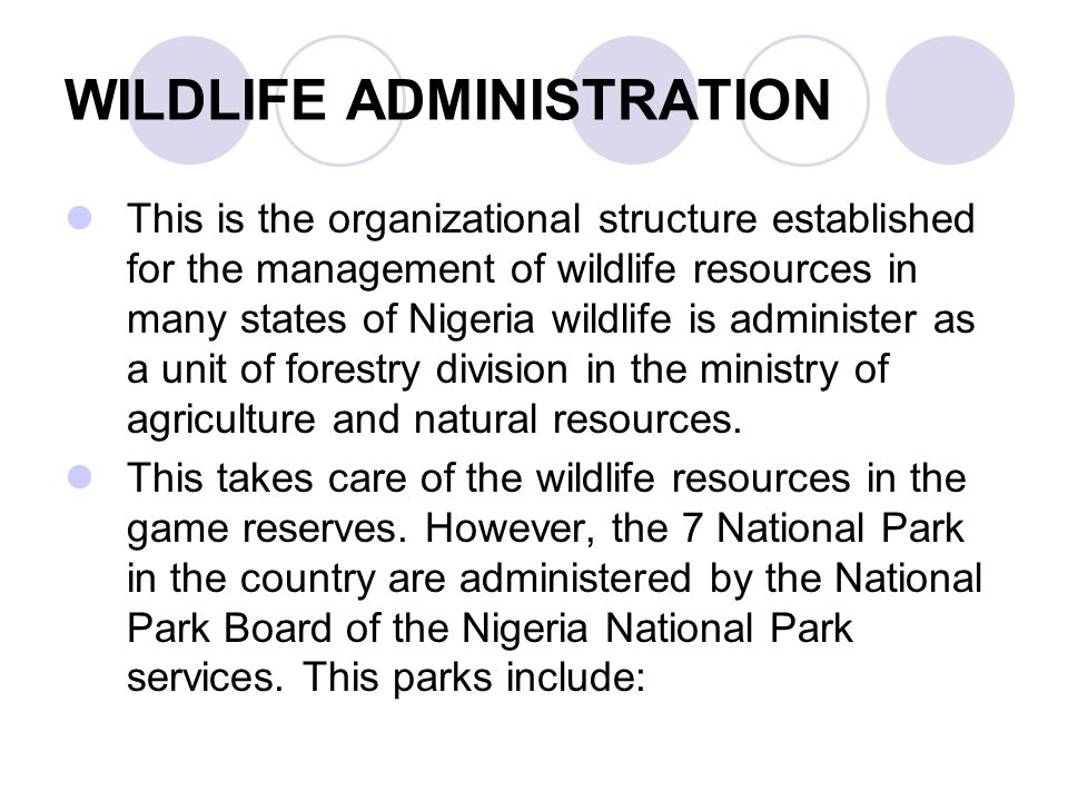 WILDLIFE ADMINISTRATION This is the organizational structure established for the management of wildlife resources in many states of Nigeria wildlife i