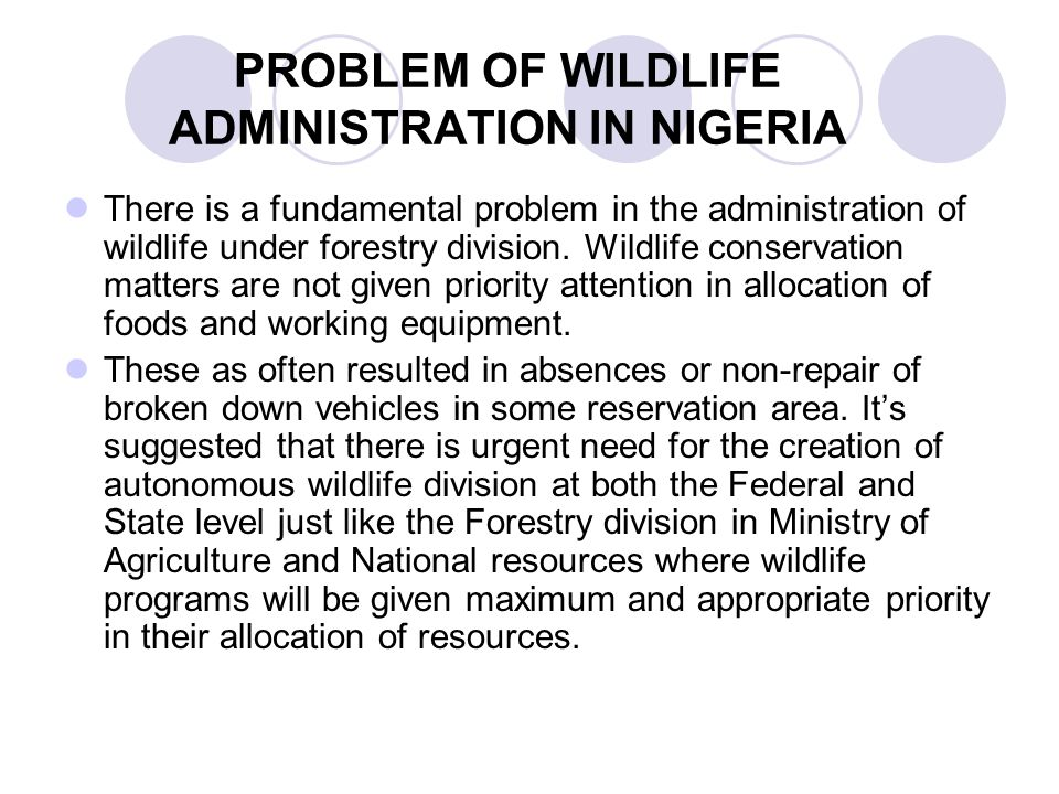 PROBLEM OF WILDLIFE ADMINISTRATION IN NIGERIA There is a fundamental problem in the administration of wildlife under forestry division. Wildlife conse
