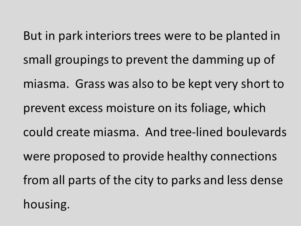 But in park interiors trees were to be planted in small groupings to prevent the damming up of miasma.