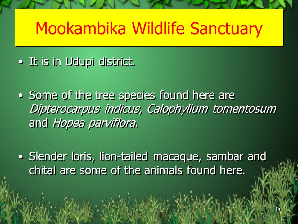 Mookambika Wildlife Sanctuary It is in Udupi district.
