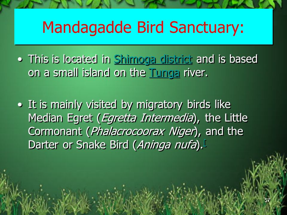 Mandagadde Bird Sanctuary: This is located in Shimoga district and is based on a small island on the Tunga river.Shimoga districtTunga It is mainly visited by migratory birds like Median Egret (Egretta Intermedia), the Little Cormonant (Phalacrocoorax Niger), and the Darter or Snake Bird (Aninga nufa).