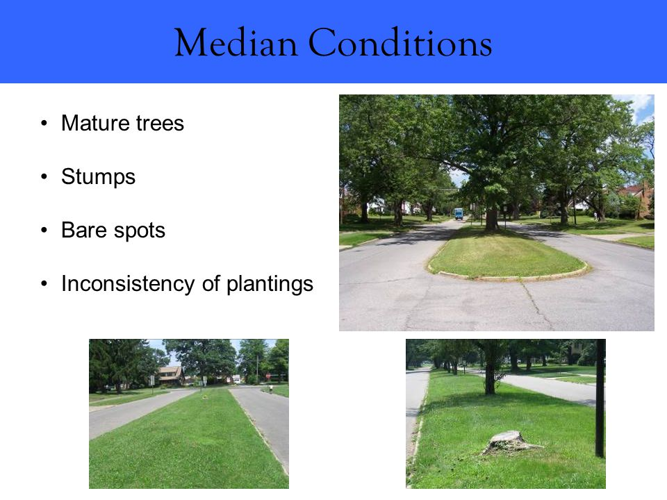 Median Conditions Mature trees Stumps Bare spots Inconsistency of plantings