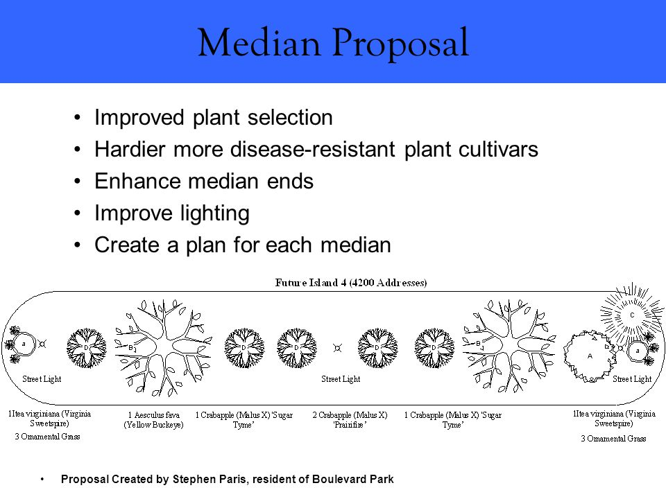 Improved plant selection Hardier more disease-resistant plant cultivars Enhance median ends Improve lighting Create a plan for each median Proposal Created by Stephen Paris, resident of Boulevard Park Median Proposal