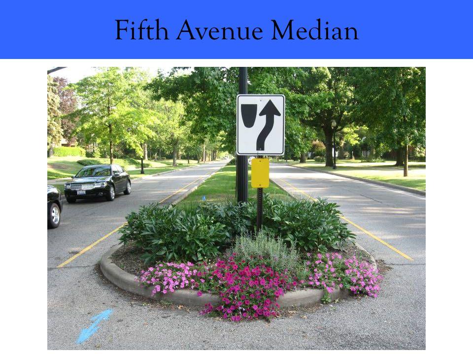 Fifth Avenue Median