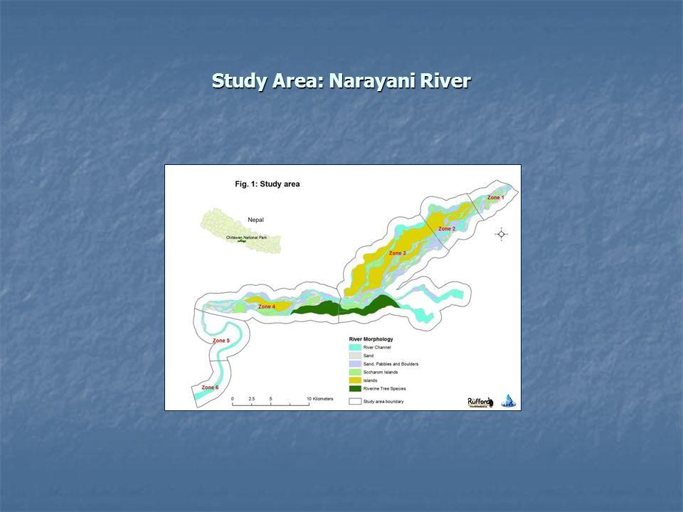 Study Area: Narayani River