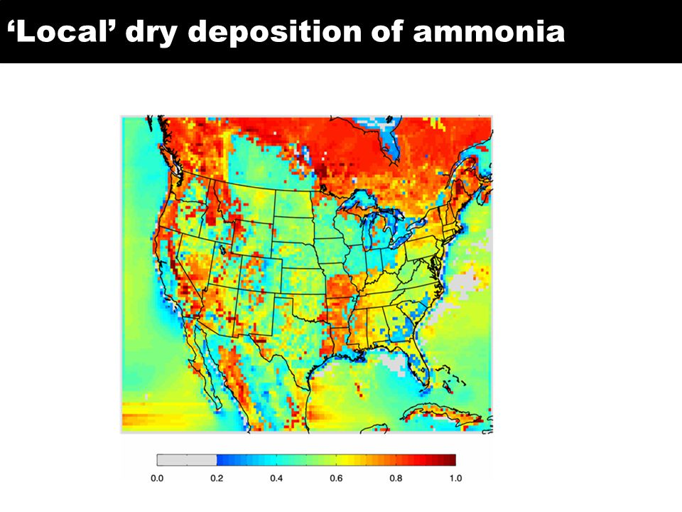 Local dry deposition of ammonia