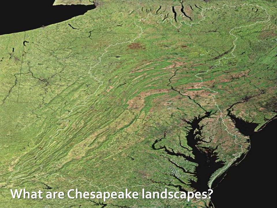 What are Chesapeake landscapes