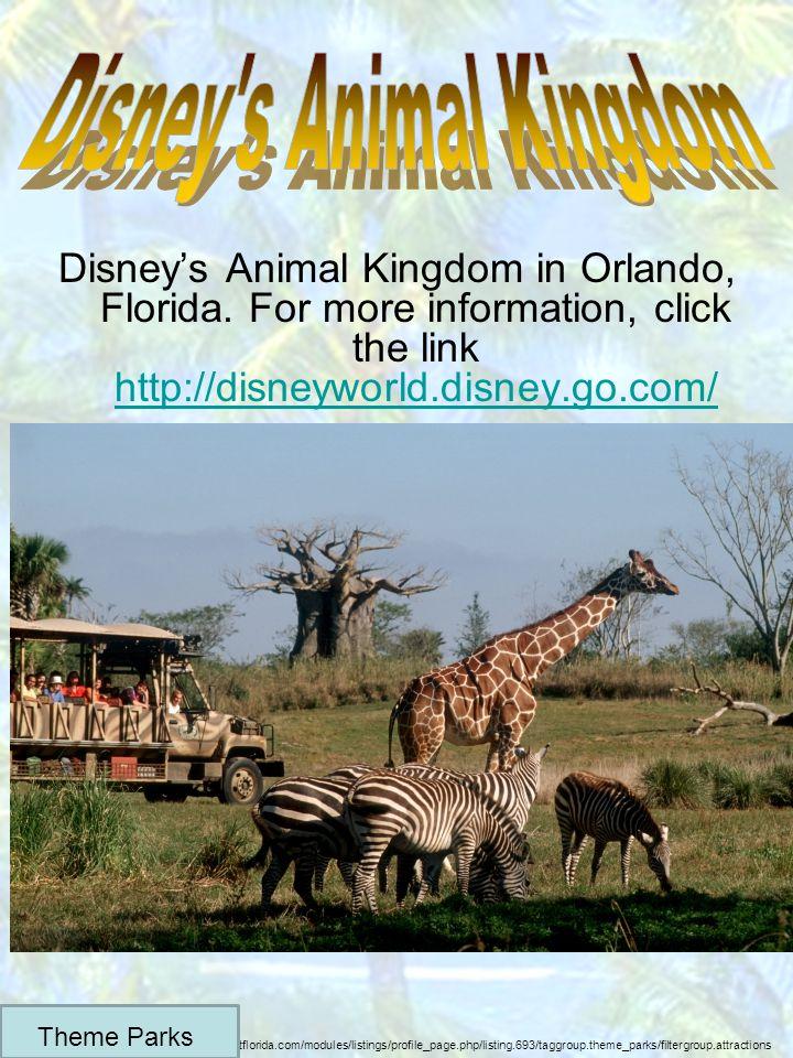 Disneys Animal Kingdom in Orlando, Florida.