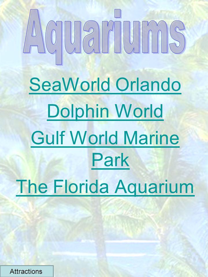SeaWorld Orlando Dolphin World Gulf World Marine Park The Florida Aquarium Attractions