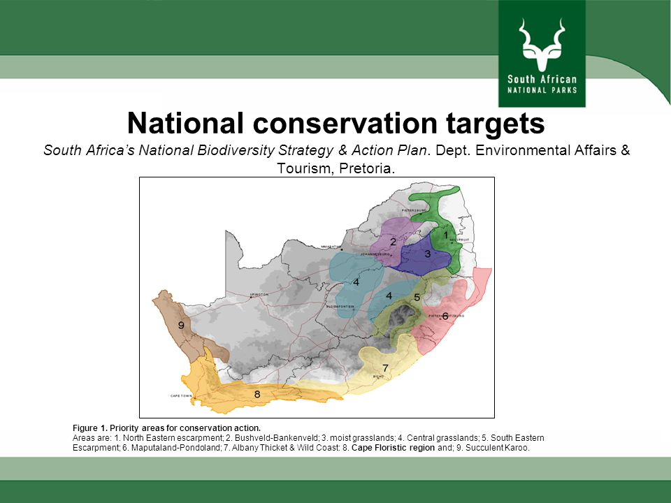 Garden Route Protected Areas Ha 11200 23500 42380 34520 25200 43744 32250 34300 252,600 ha - total of all Protected Areas including MPAs 157,000 ha - currently managed by SANParks 86,260 ha - currently managed by CapeNature and ECPB