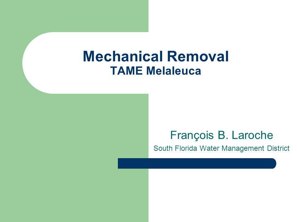 Mechanical Removal TAME Melaleuca François B. Laroche South Florida Water Management District