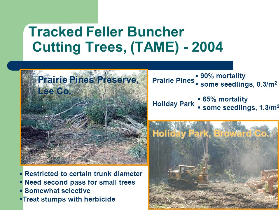 Tracked Feller Buncher Cutting Trees, (TAME) - 2004 Restricted to certain trunk diameter Need second pass for small trees Somewhat selective Treat stu