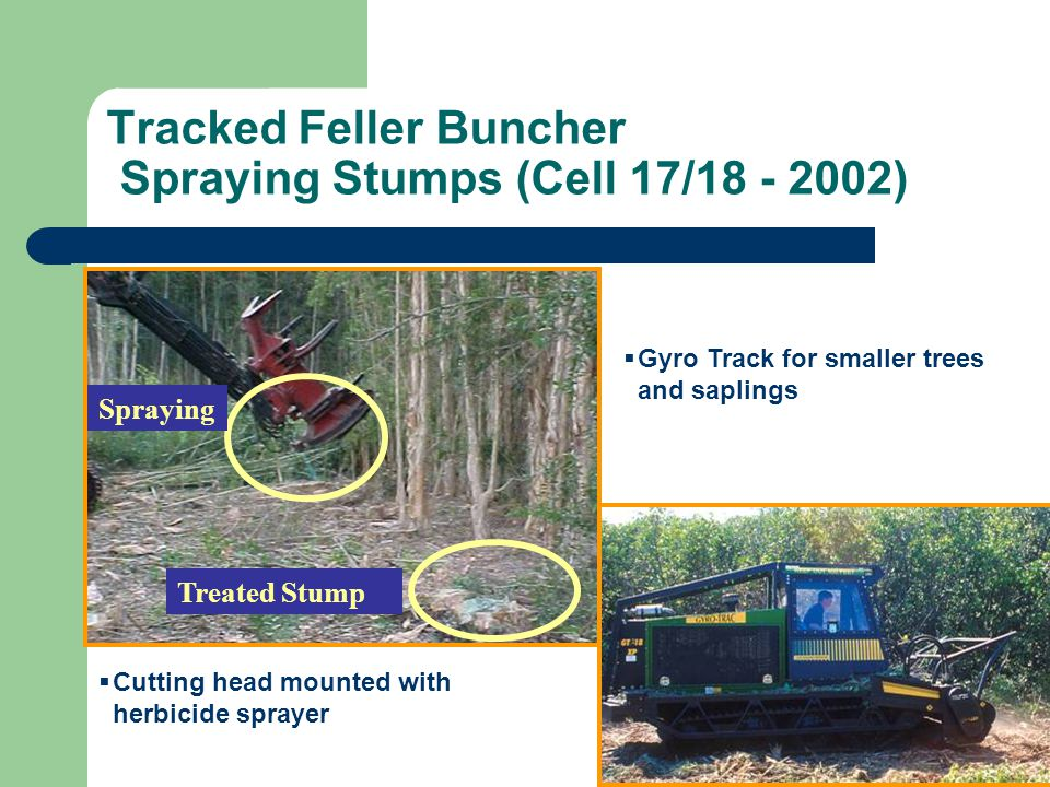 Tracked Feller Buncher Spraying Stumps (Cell 17/18 - 2002) Treated Stump Spraying Cutting head mounted with herbicide sprayer Gyro Track for smaller t
