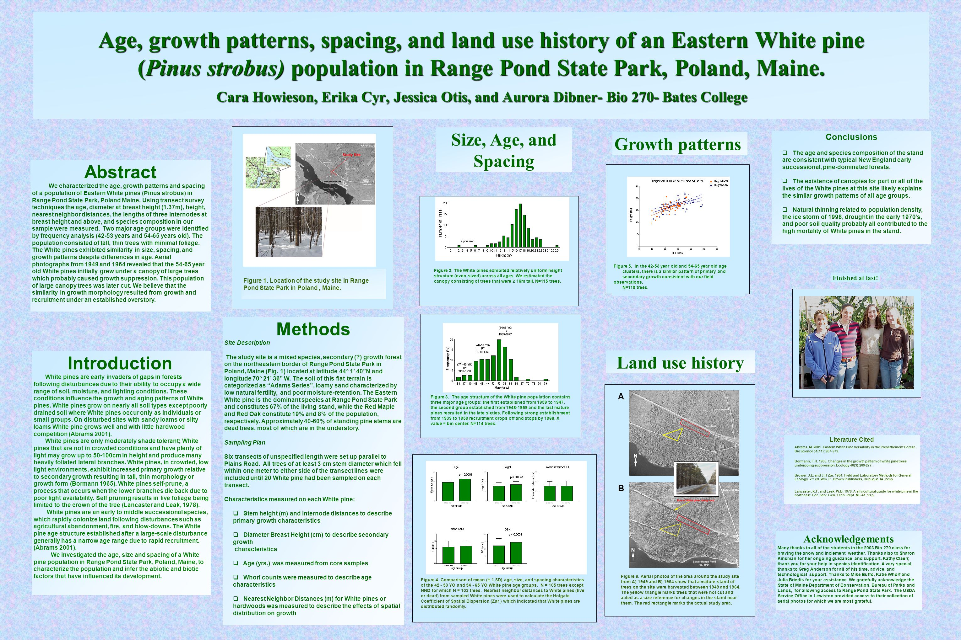 Age, growth patterns, spacing, and land use history of an Eastern White pine (Pinus strobus) population in Range Pond State Park, Poland, Maine. Cara