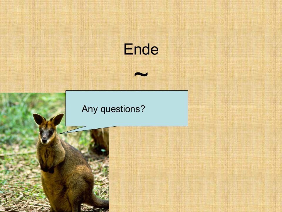 Ende ~ Any questions
