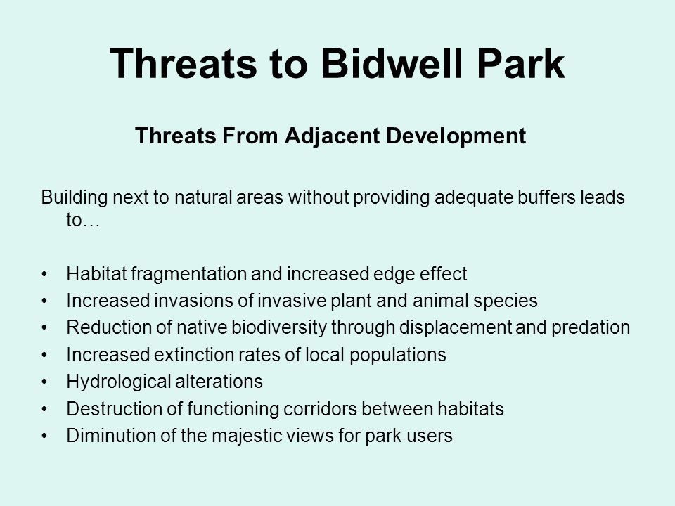 Threats to Bidwell Park Threats From Adjacent Development Building next to natural areas without providing adequate buffers leads to… Habitat fragmentation and increased edge effect Increased invasions of invasive plant and animal species Reduction of native biodiversity through displacement and predation Increased extinction rates of local populations Hydrological alterations Destruction of functioning corridors between habitats Diminution of the majestic views for park users