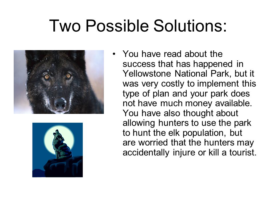 Two Possible Solutions: You have read about the success that has happened in Yellowstone National Park, but it was very costly to implement this type of plan and your park does not have much money available.