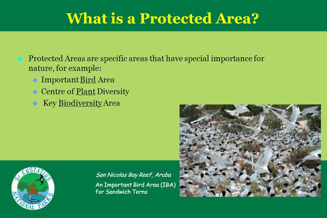 What is a Protected Area.