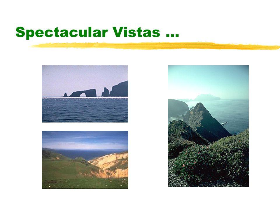 Spectacular Vistas...