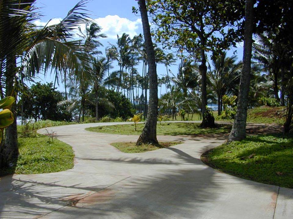 Lydgate Park to Lihi ParkKe Ala Hele Makalae Phase III Pathways Project 19