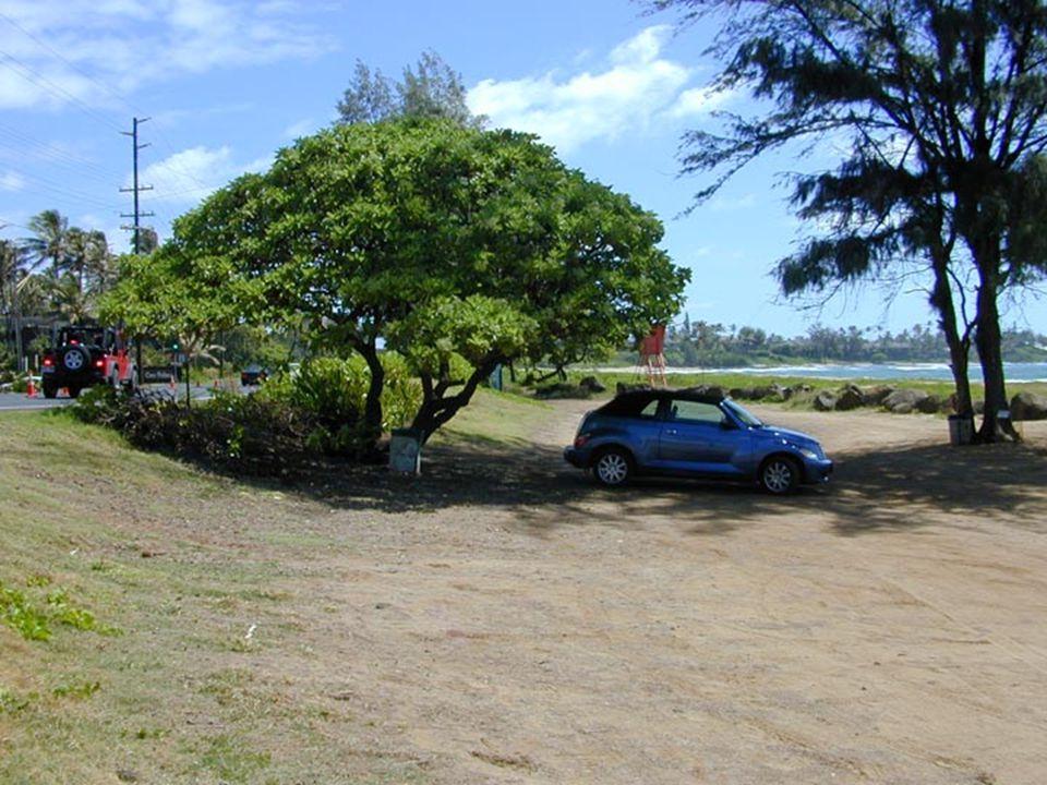 Lydgate Park to Lihi ParkKe Ala Hele Makalae Phase III Pathways Project 30
