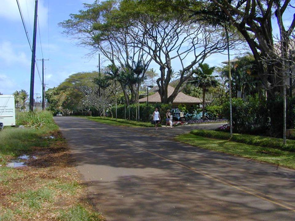 Lydgate Park to Lihi ParkKe Ala Hele Makalae Phase III Pathways Project 51