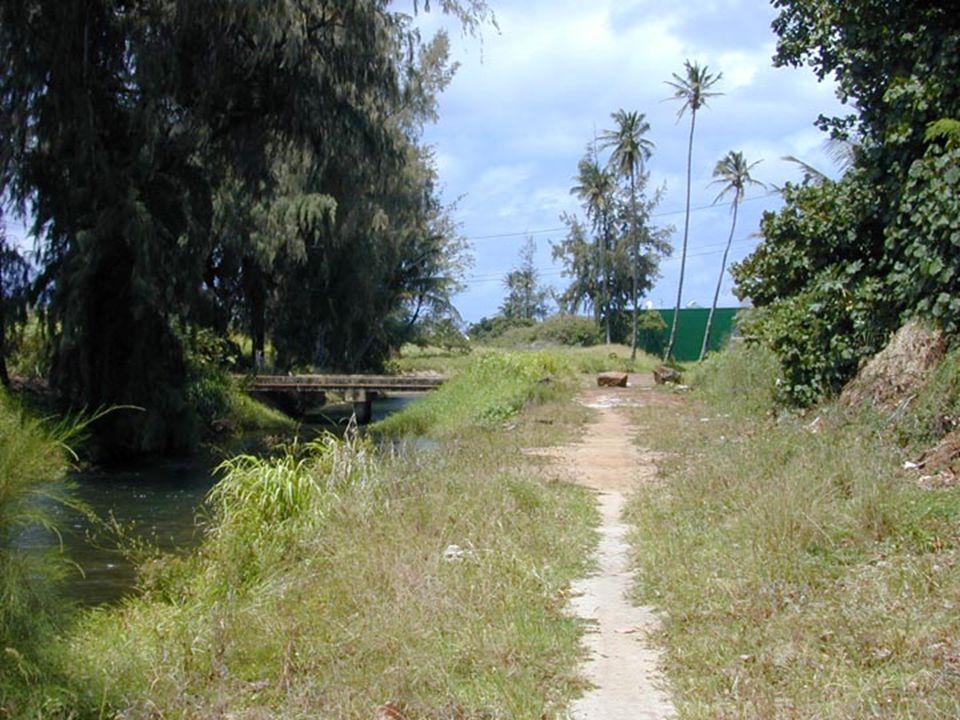 Lydgate Park to Lihi ParkKe Ala Hele Makalae Phase III Pathways Project 68
