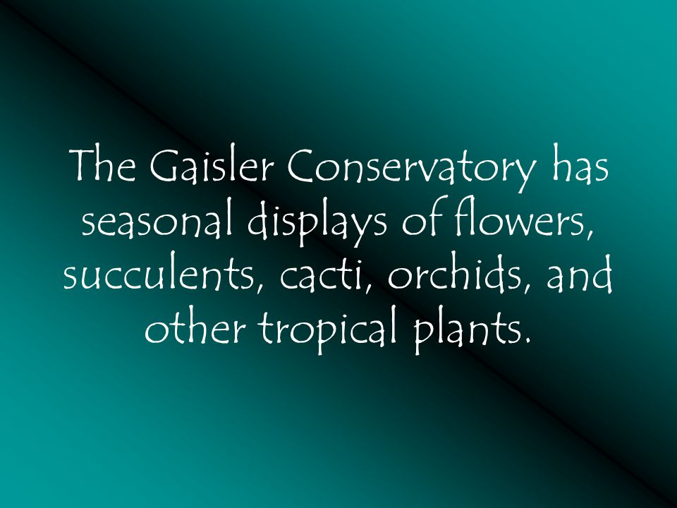 The Gaisler Conservatory has seasonal displays of flowers, succulents, cacti, orchids, and other tropical plants.