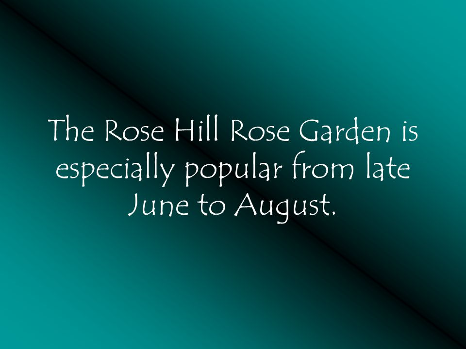 The Rose Hill Rose Garden is especially popular from late June to August.