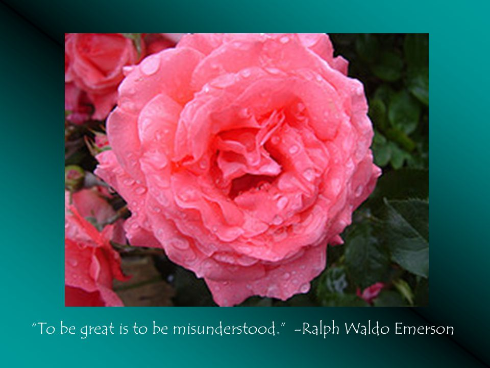 To be great is to be misunderstood. -Ralph Waldo Emerson