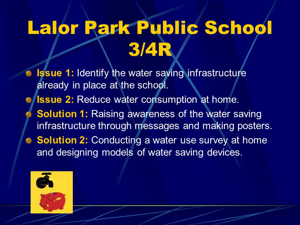 Lalor Park Public School 3/4R Saving water in our school and at our homes. The Site of Issue 1.