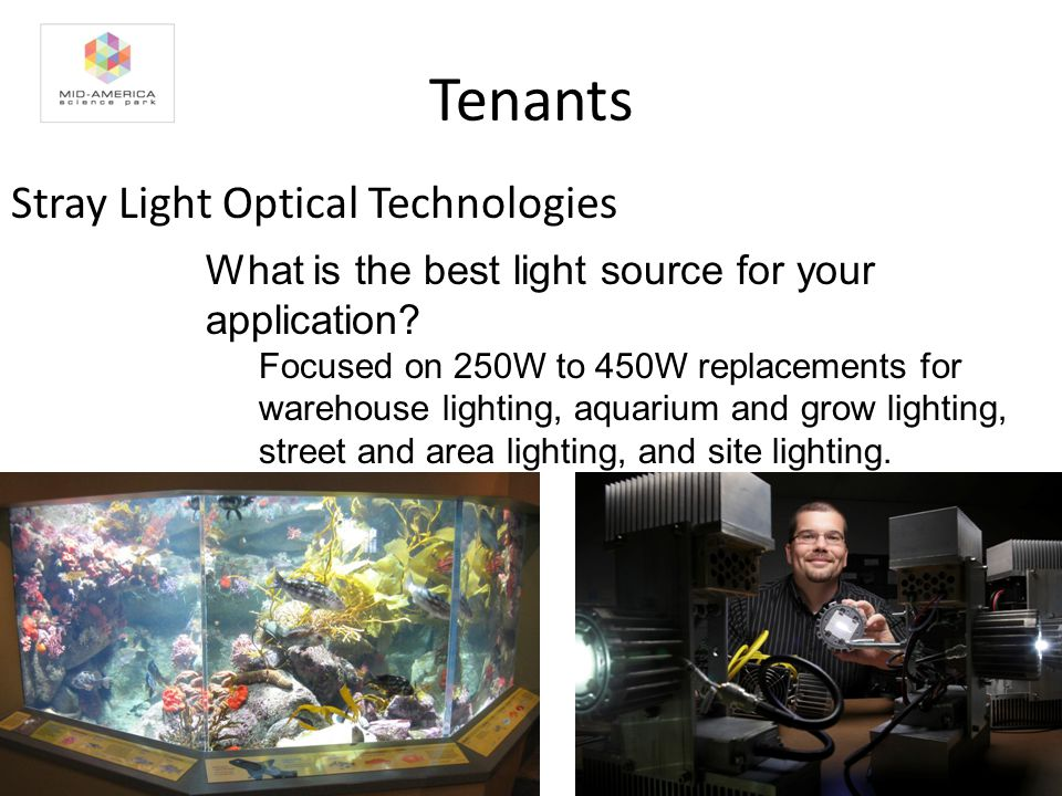 Tenants Stray Light Optical Technologies What is the best light source for your application.