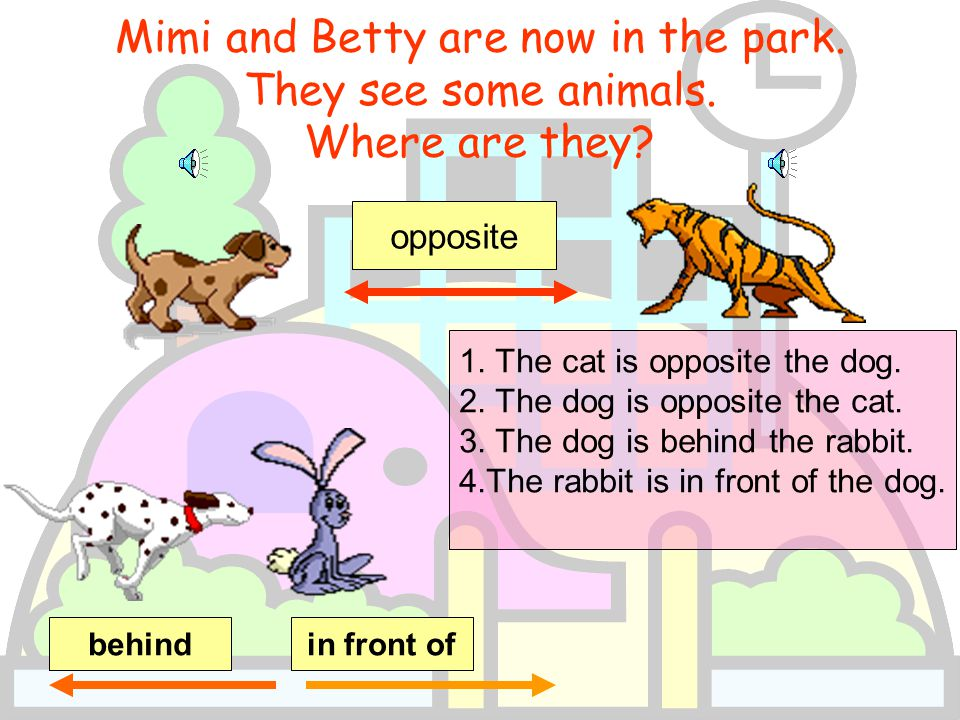 Mimi and Betty are now in the park.They see some animals.