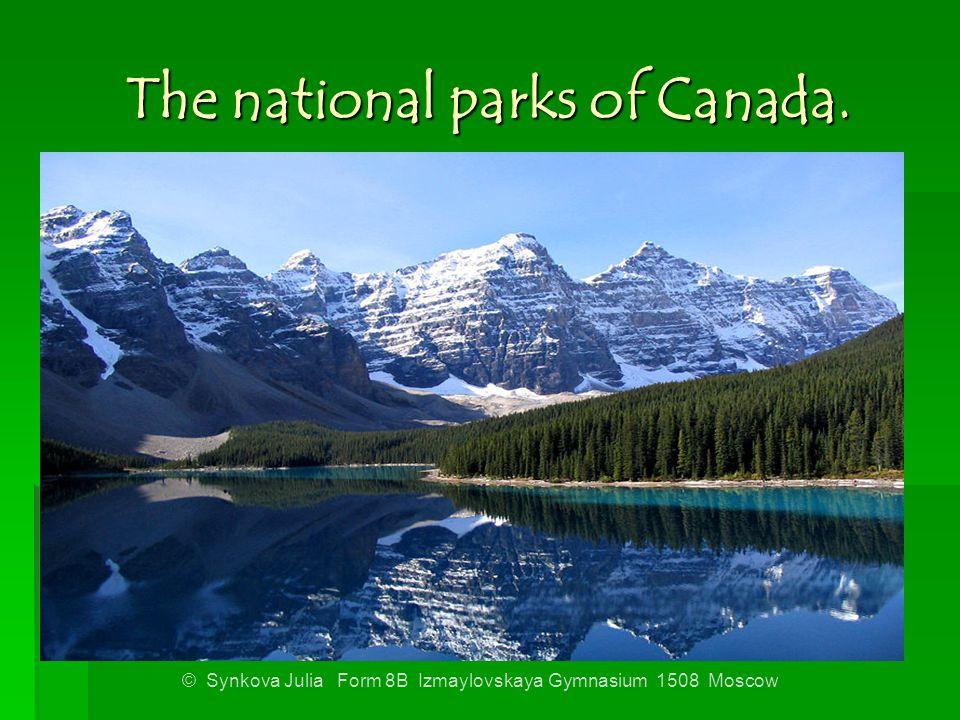 The national parks of Canada. © Synkova Julia Form 8B Izmaylovskaya Gymnasium 1508 Moscow