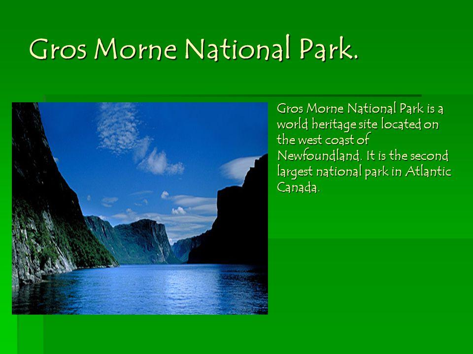 Gros Morne National Park.