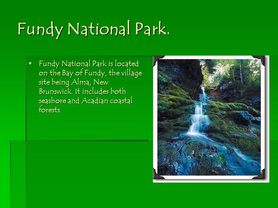 Fundy National Park.