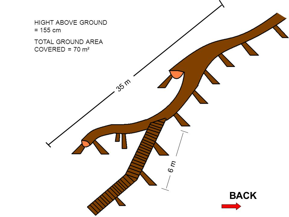 35 m 6 m HIGHT ABOVE GROUND = 155 cm TOTAL GROUND AREA COVERED = 70 m²