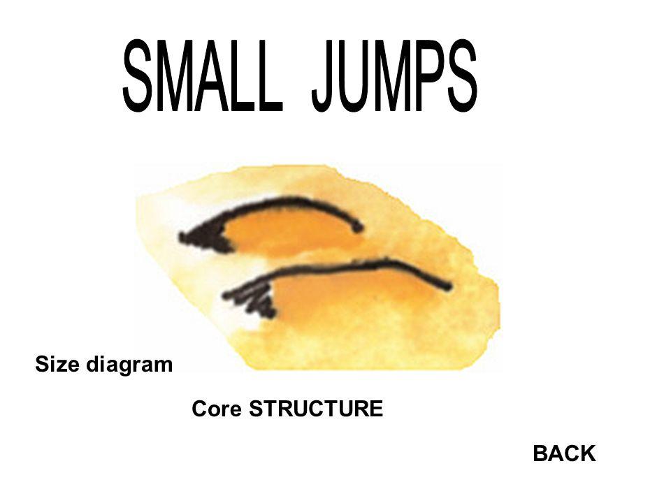 Core STRUCTURE Size diagram BACK