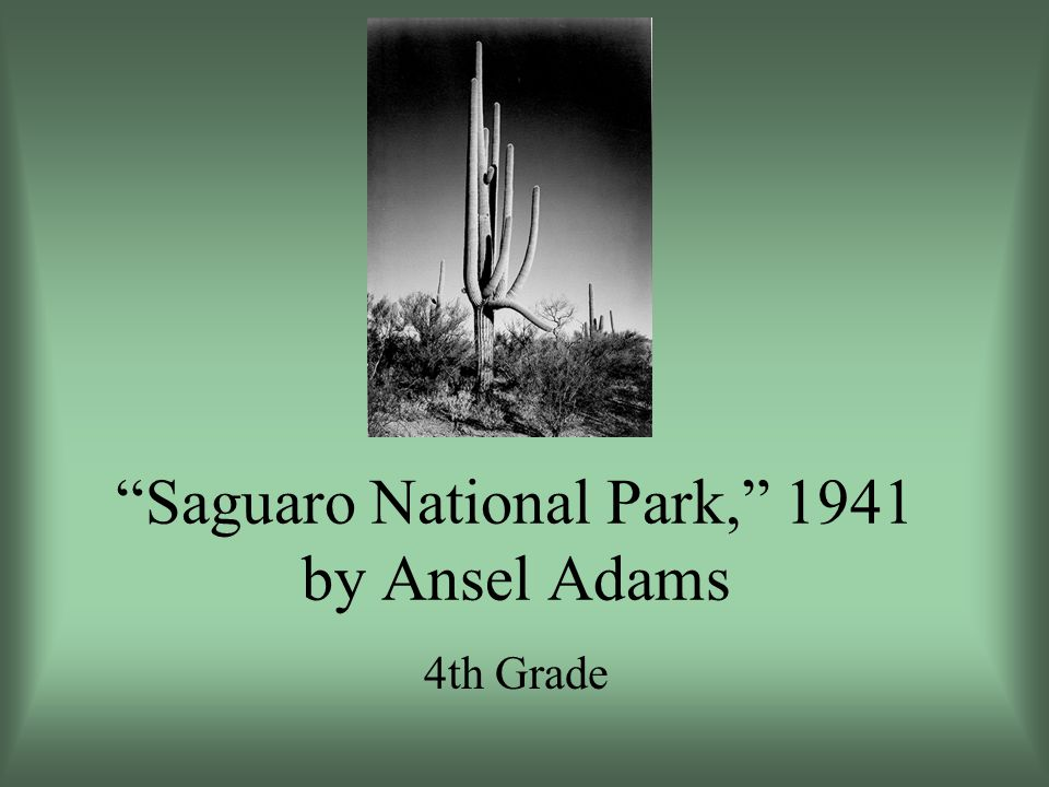 Saguaro National Park, 1941 by Ansel Adams 4th Grade