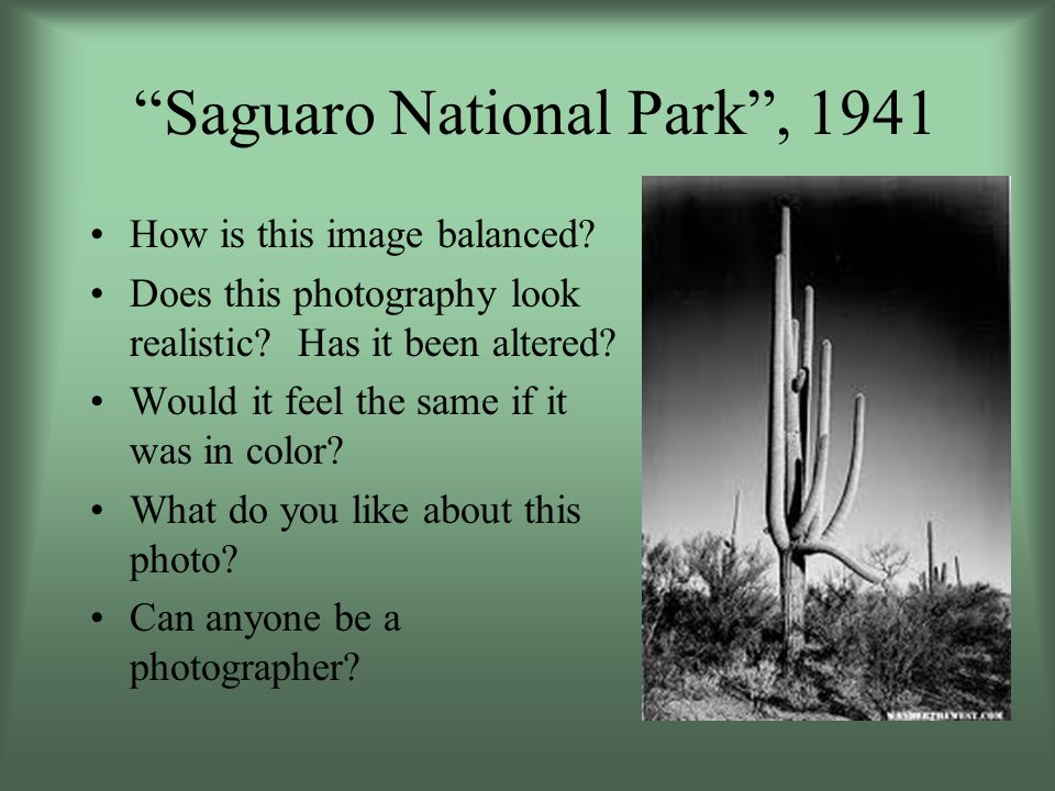 Tear Art Project Visualize your Arizona landscape (be sure to include a cactus).
