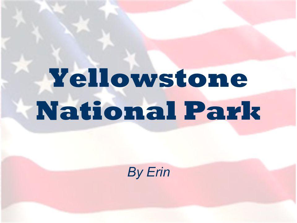 Where is Yellowstone.