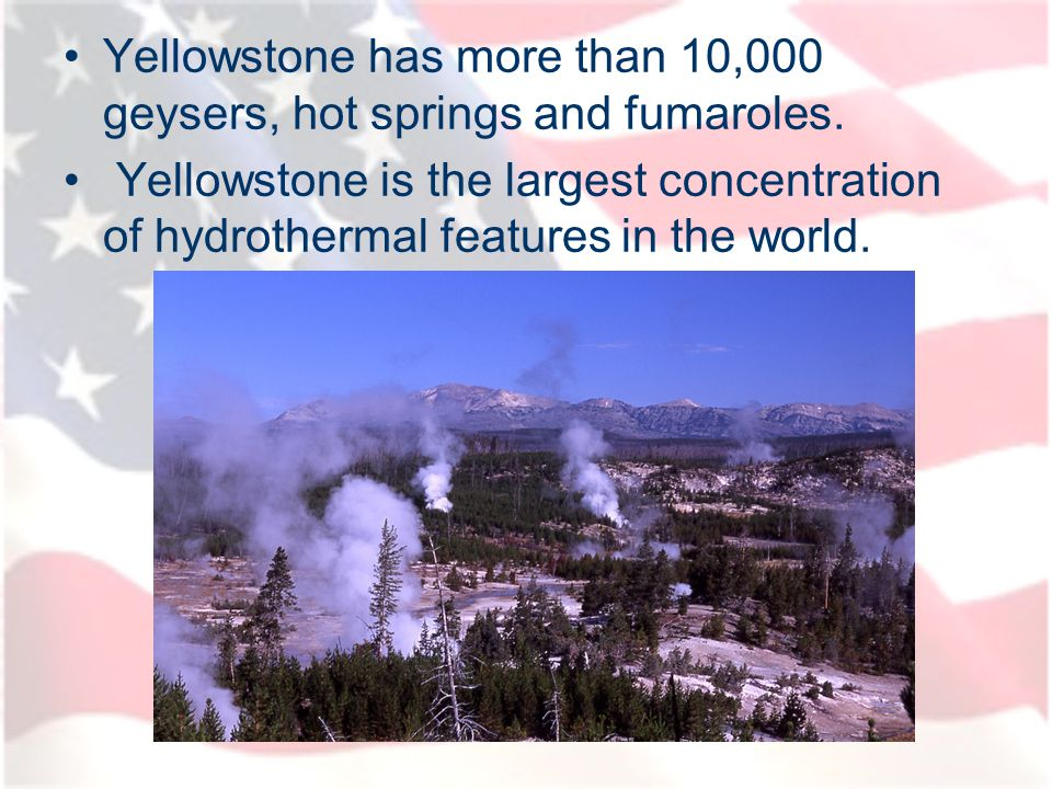 Yellowstone has more than 10,000 geysers, hot springs and fumaroles.