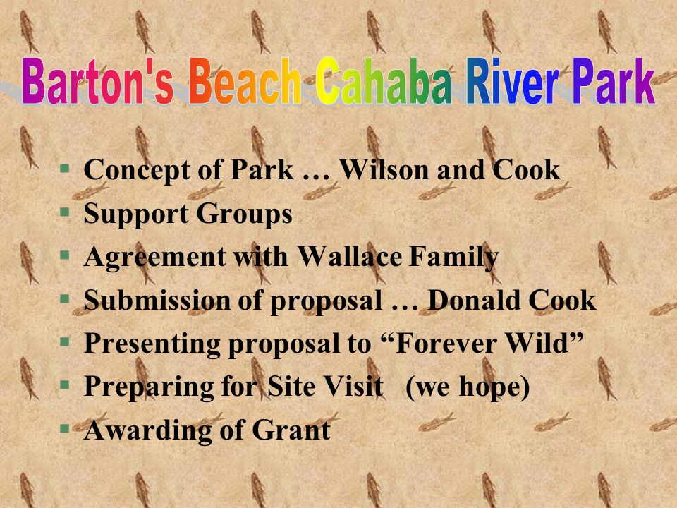§Concept of Park … Wilson and Cook §Support Groups §Agreement with Wallace Family §Submission of proposal … Donald Cook §Presenting proposal to Forever Wild §Preparing for Site Visit (we hope) §Awarding of Grant