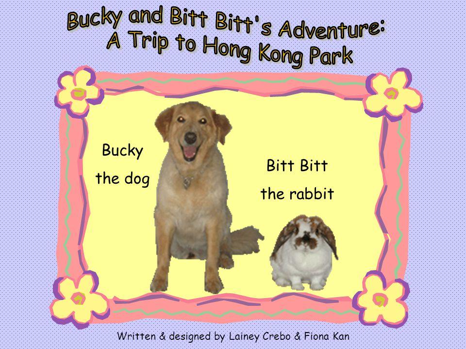 Bitt the rabbit Bucky the dog Written & designed by Lainey Crebo & Fiona Kan