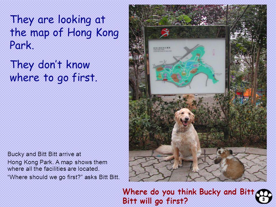 Where do you think Bucky and Bitt Bitt will go first? Bucky and Bitt Bitt arrive at Hong Kong Park. A map shows them where all the facilities are loca