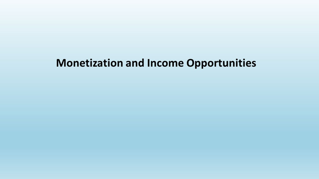 Monetization and Income Opportunities