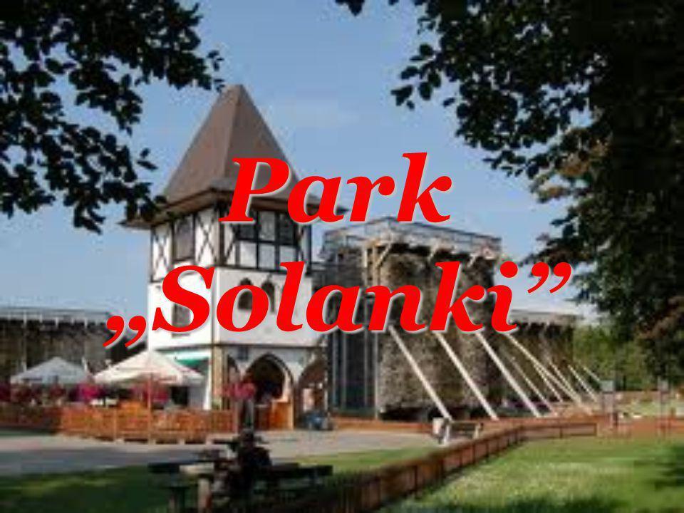 Park Solanki
