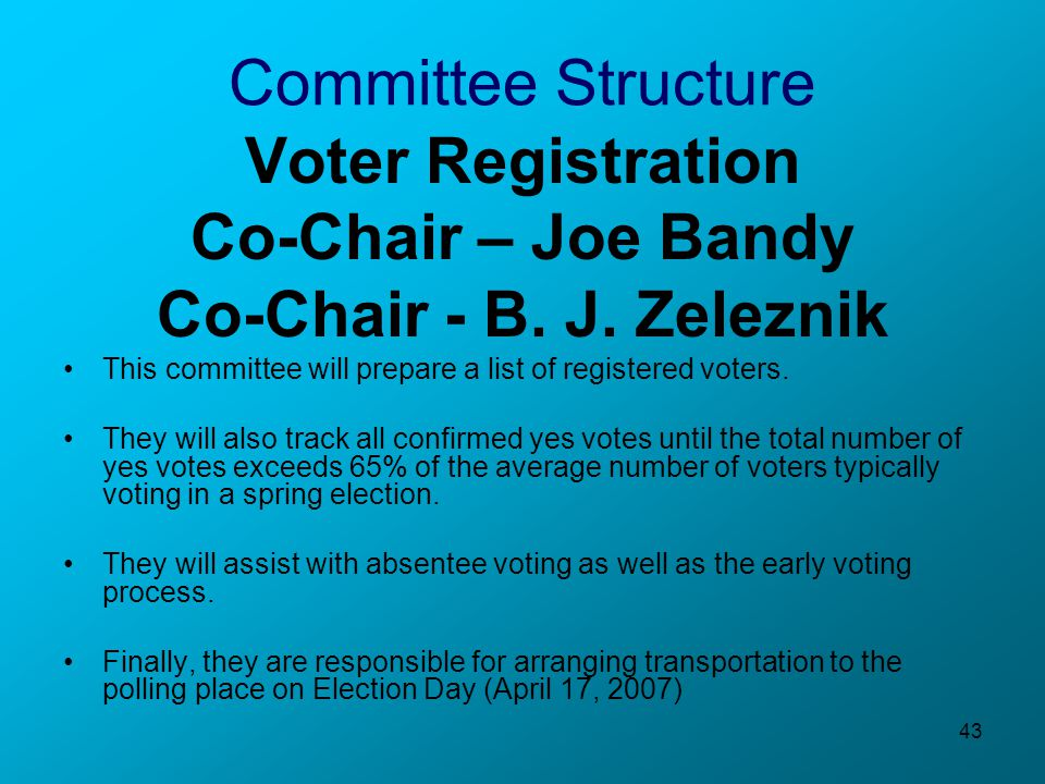 43 Committee Structure Voter Registration Co-Chair – Joe Bandy Co-Chair - B.