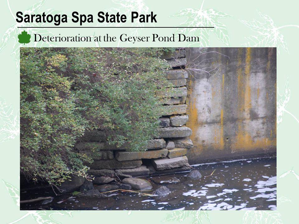 Saratoga Spa State Park Deterioration at the Geyser Pond Dam